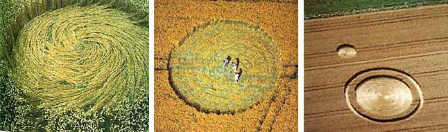circulos Círculos nas Plantações