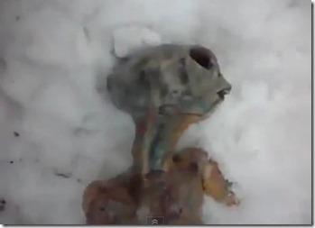 siberia-extraterrestre