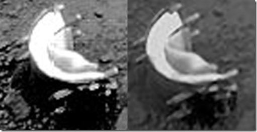 venus alien2 thumb Vida foi encontrada em Vênus, diz cientista russo