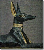 anubis-chacal