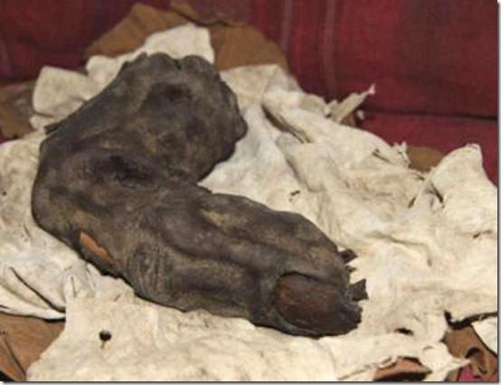 dedo gigante thumb Dedo gigante de 38 cm é encontrado no Egito