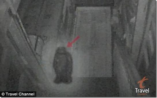 ... Kells pub para tentar confirmar relatos de aparições de fantasmas