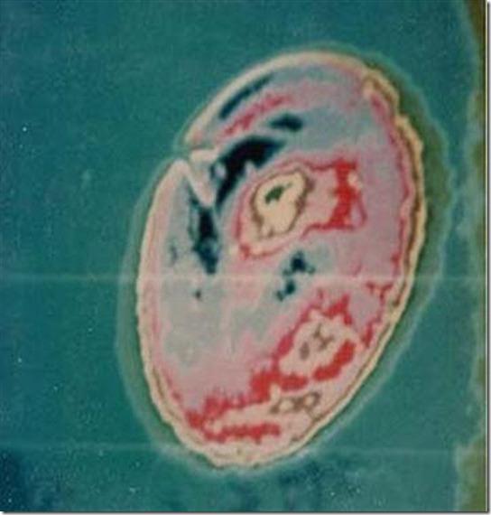 ufo-bendigo
