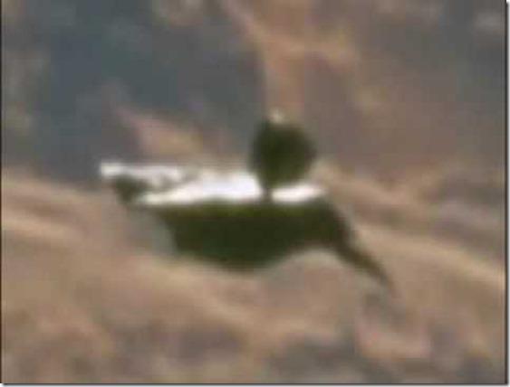 satelite-alien-3