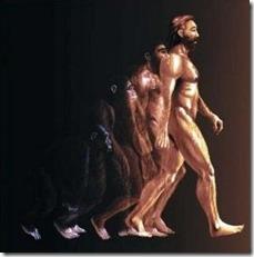 evolucao thumb Os seres humanos pararam de evoluir?