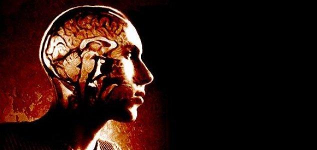 cerebro-inteligencia