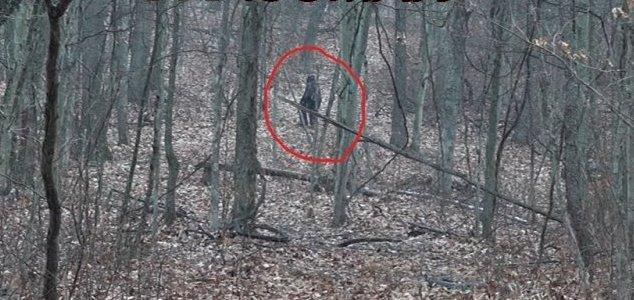 Dois homens filmam suposto 'pé grande' na floresta de Ohio